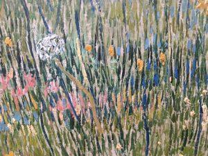 Foto paardenbloem schilderij